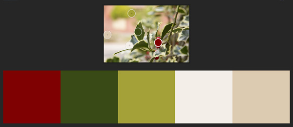 Winter palette holly